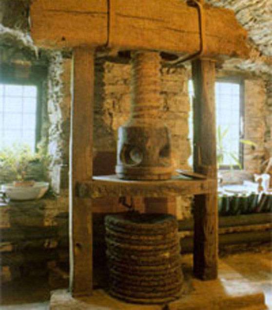 prensa de olivas